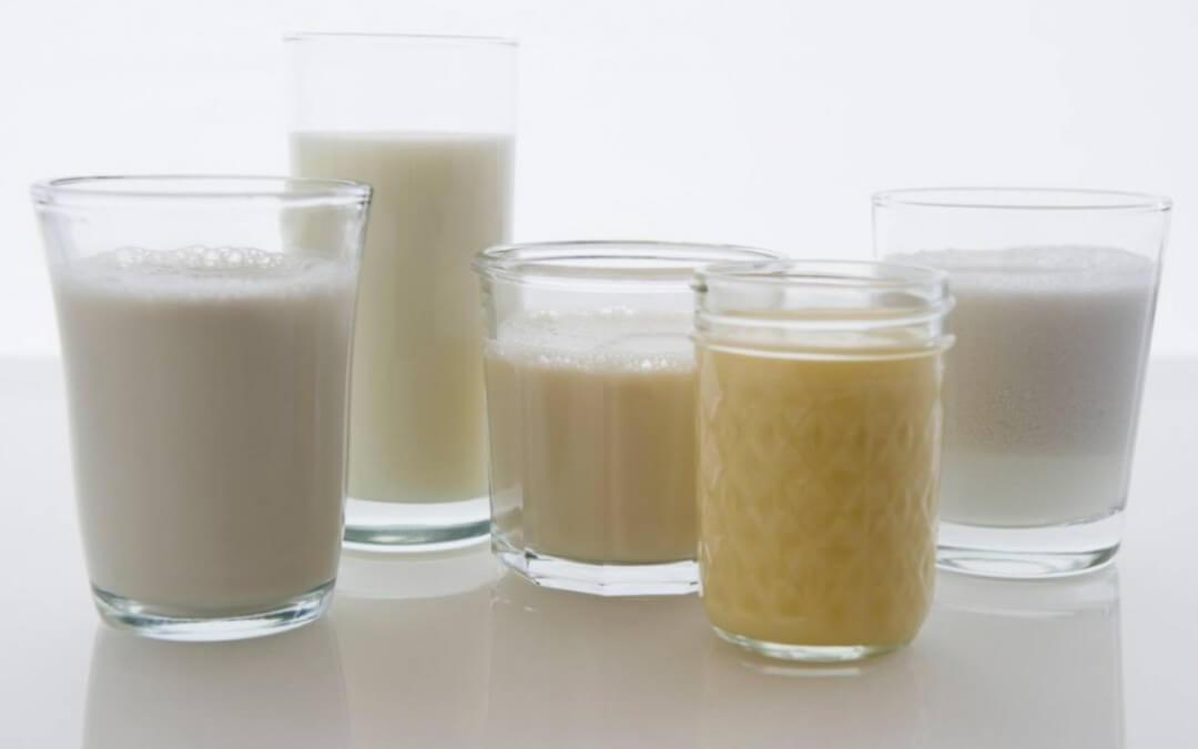 Melk en vervangers