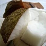Kokosmelk: biologisch en veelzijdig