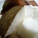 De gezondheidsvoordelen van kokos