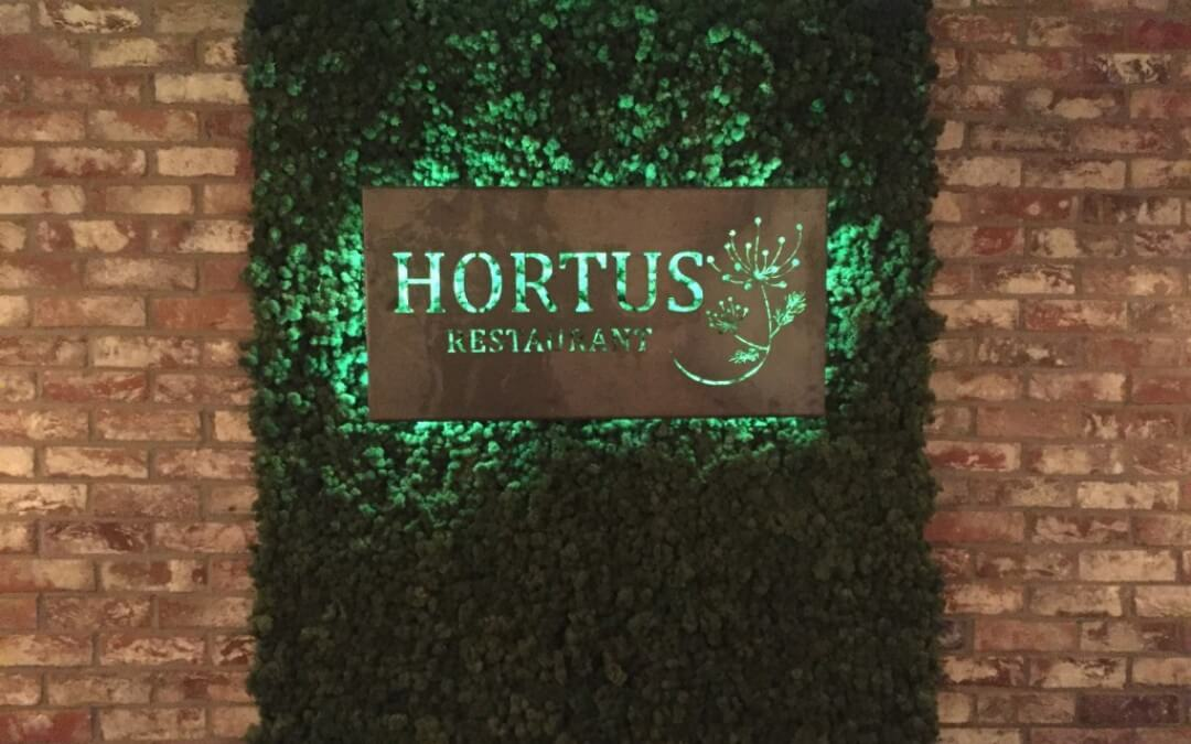 Hortus: Vegan in Den Haag