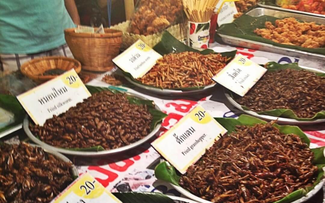 Vegetarisch dilemma: insecten
