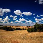 Ribera del Duero: favoriete Spaanse rode wijn