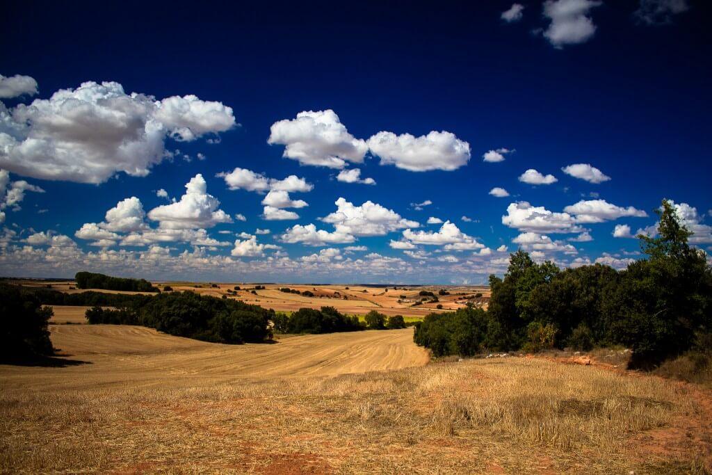 Ribera del Duero: de beste Spaanse wijnen