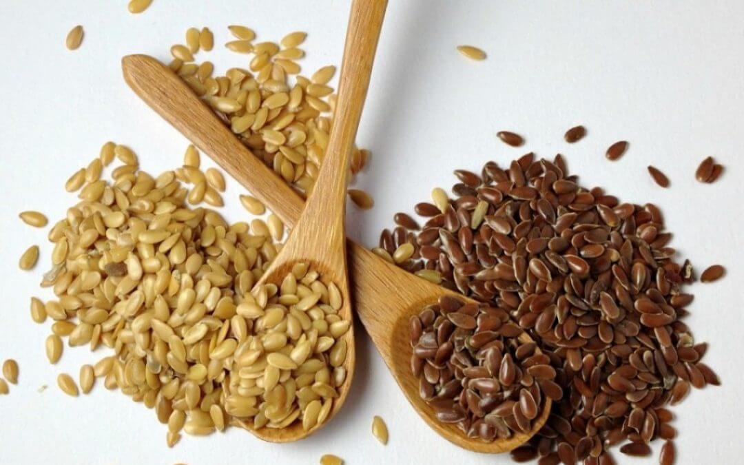 Top 5: Artikelen over gezonde voeding