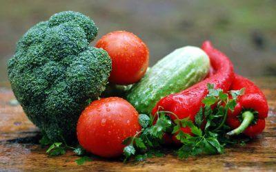 Handleiding voor vegetariërs