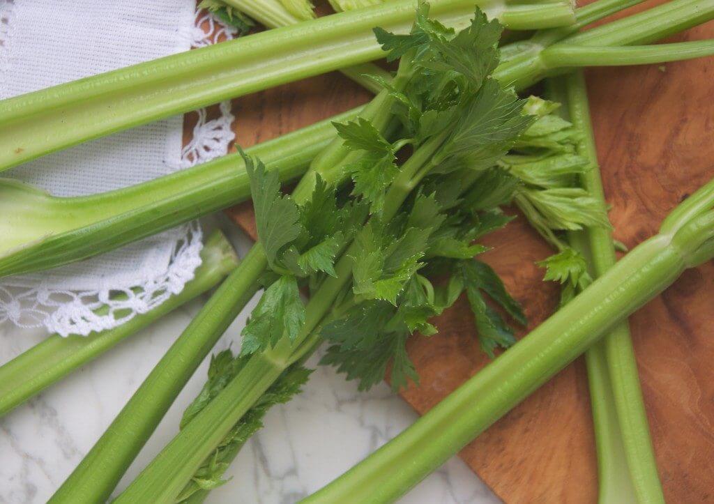 celery-introduction-2