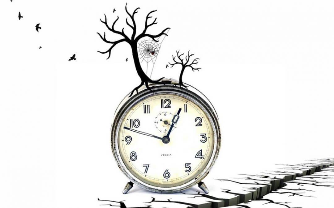 Hoe volg je je biologische klok?