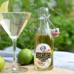 Shrub met gin, tonic, vlierbessen-appel- limoenazijn en munt