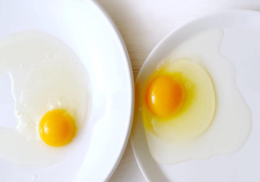 Het perfecte ei: gekookt, gebakken, roerei en omelet