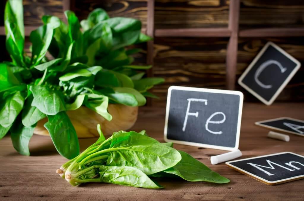 Ijzer: essentieel voor vegetariërs