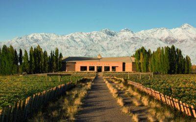 Argentijnse Salentein wijnen uit de Mendoza