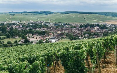 "Alles over de Franse Bourgogne en zijn ""kleine"" Chablis"