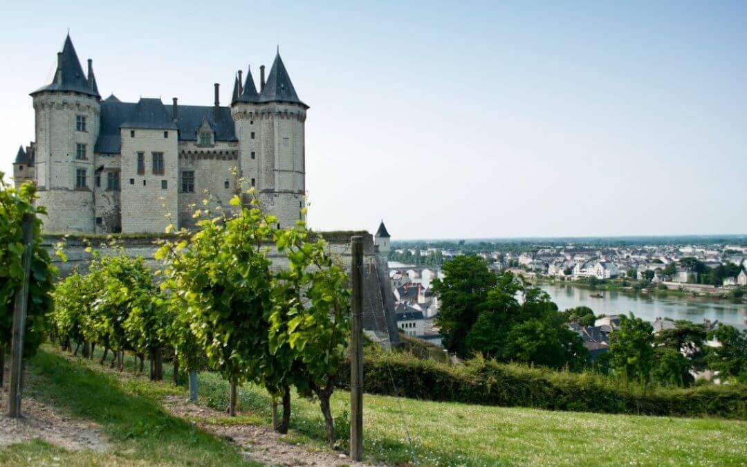 De Loire en haar Chenin Blanc