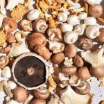 Vegan kruidige paddenstoelen-jus