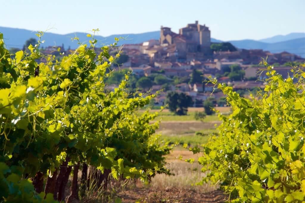 Wat je moet weten over wijn uit de Franse Languedoc