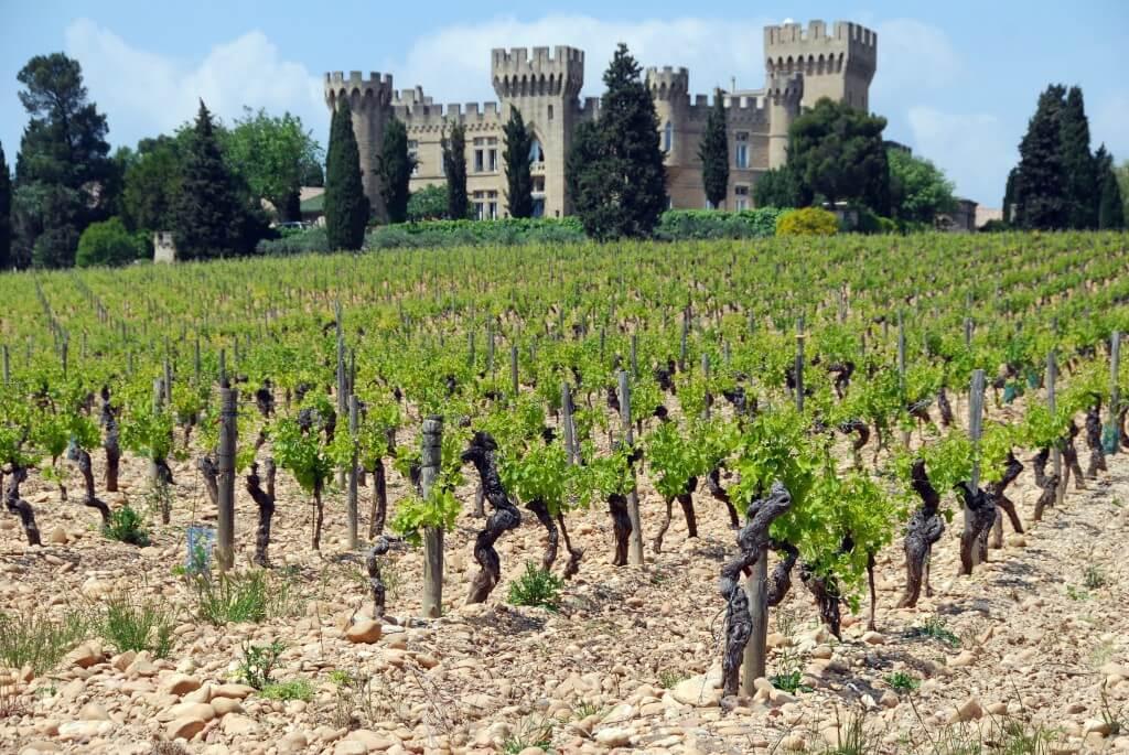 6 x wat je moet weten over wijn uit de Franse Rhône (Isabel's favoriet!)