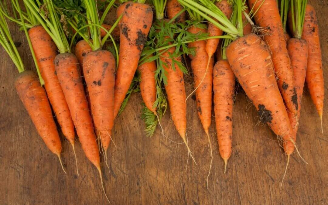 5 redenen om meer wortels te eten