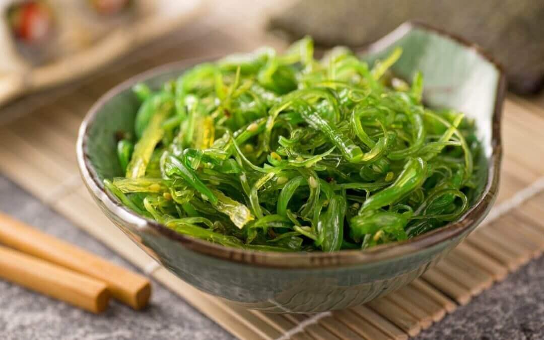 Top 5: recepten met algen