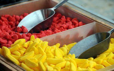 Alle soorten alternatieven voor gelatine op een rijtje