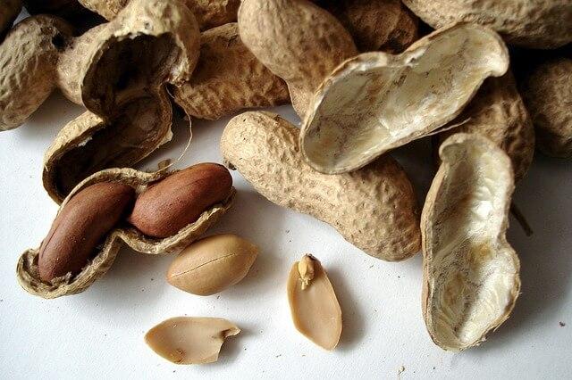 Wat is het verschil tussen een pinda- en notenallergie?
