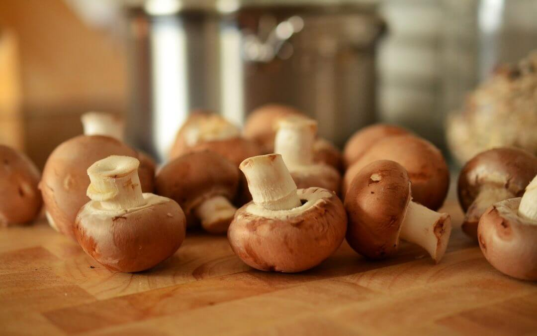 Plantaardige vervanger voor vlees: paddenstoelen