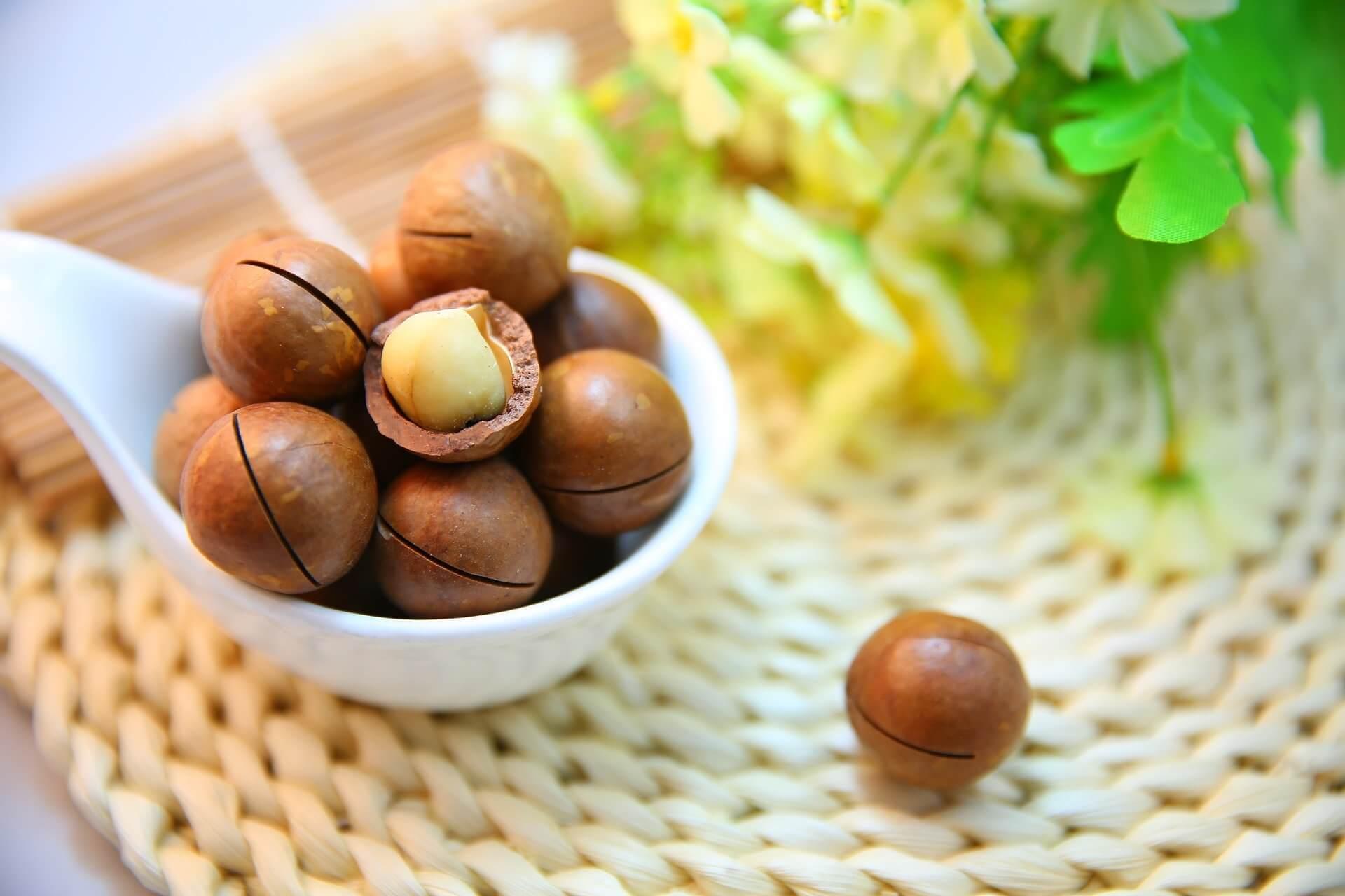 De gezondheidsvoordelen van Macadamianoten