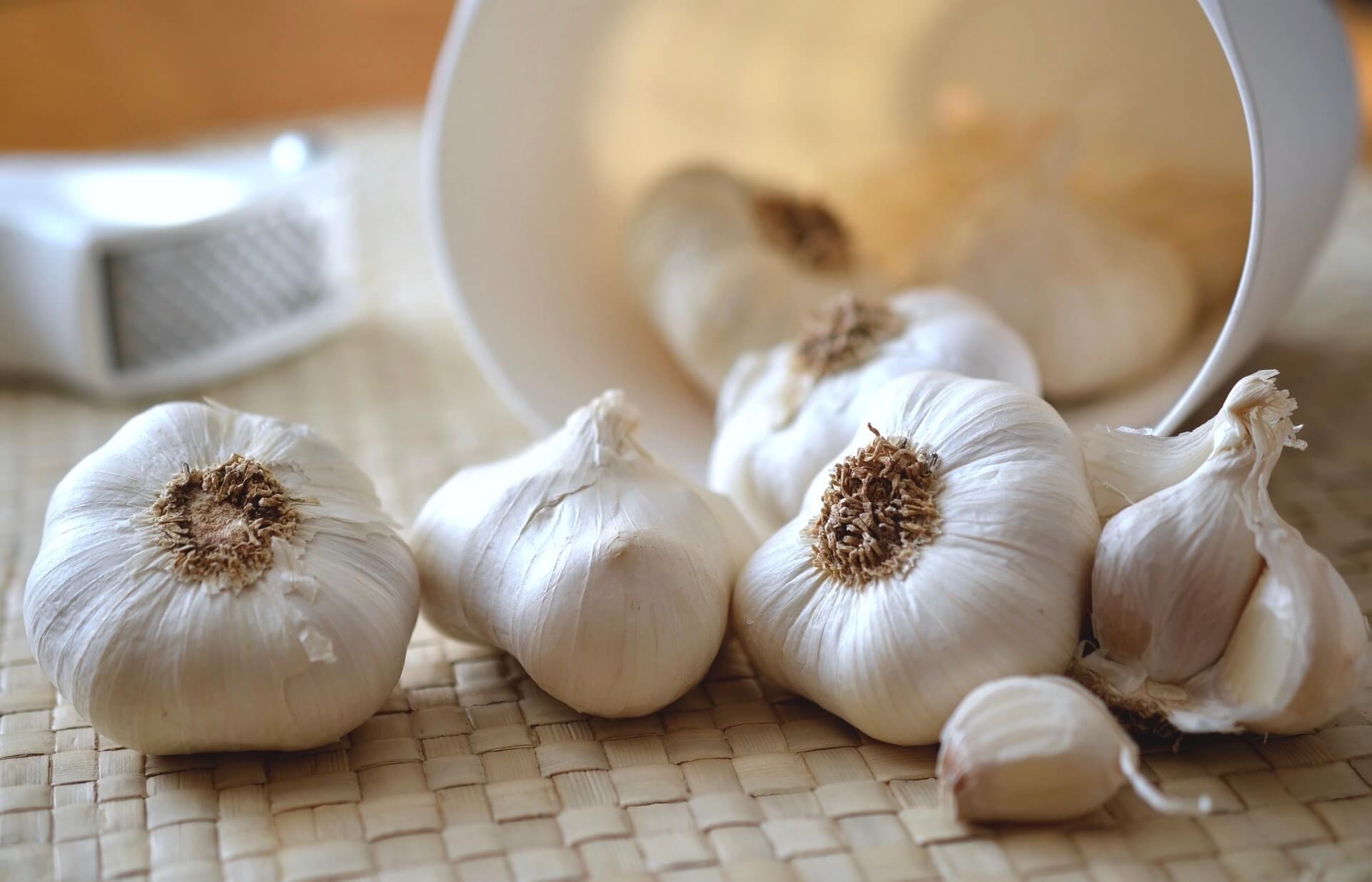 De gezondheidsvoordelen van knoflook