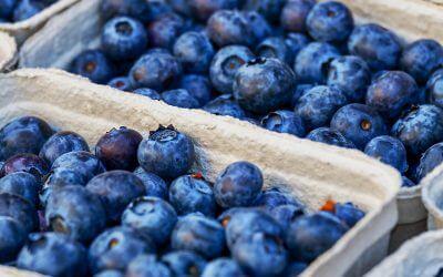 Hoe gezond zijn blauwe bessen nou echt?
