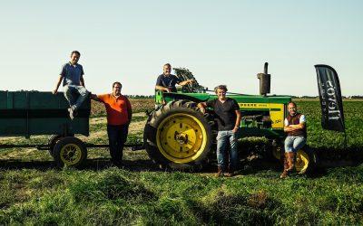Maaltijdboxen vers uit de polder: Flevo's Weelde