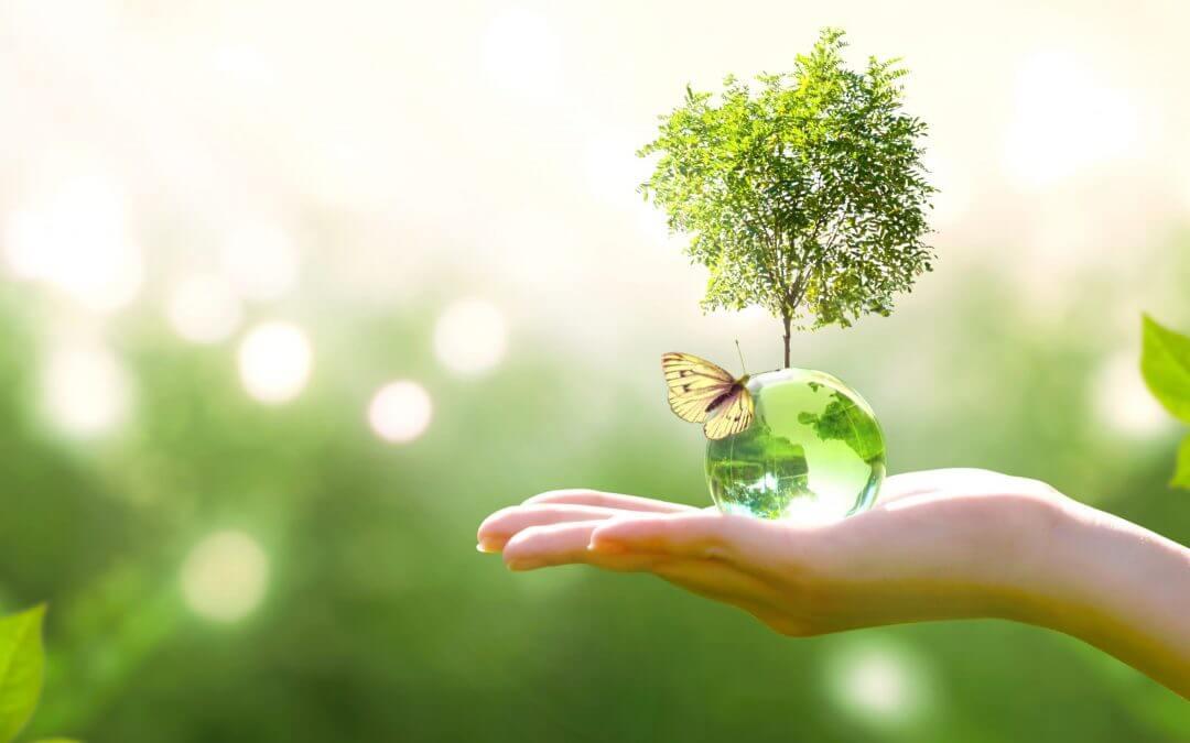 5 tips om duurzamer te leven
