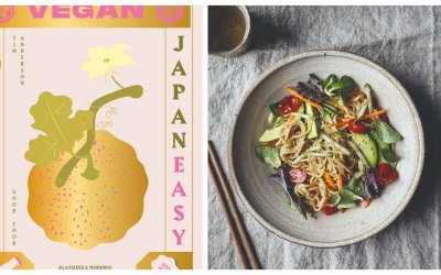 REVIEW: Vegan JapanEasy