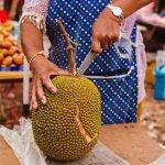 Jackfruit: de tropische vrucht die omgetoverd kan worden tot vleesvervanger